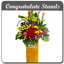 Congratulate Stands
