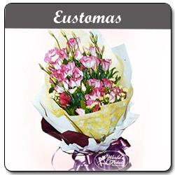 Eustomas