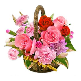 In Full Bloom