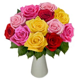 A Dozen Rainbow Roses
