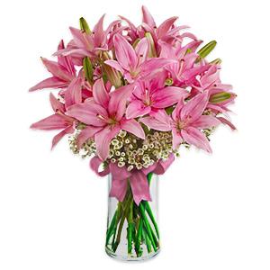 Lilies Blushing