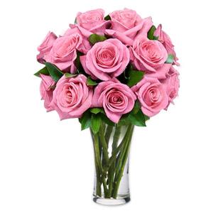 Goddess 12 Pink Roses