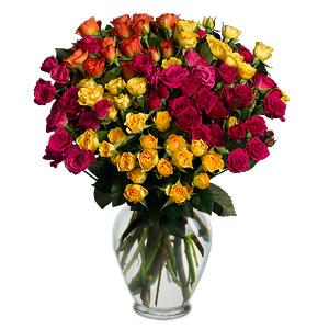 Fantasia 16 Long Stem Spray Roses