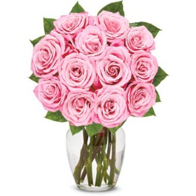 Bouquet of One Dozen Light Pink Roses