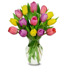 Summer Tulip Bouquet - 15 Stems