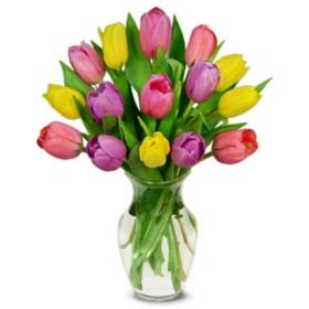 Summer Tulip Bouquet - 15 Stems