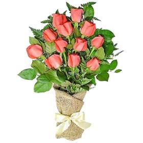 12 Coral Roses