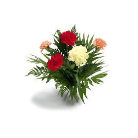 Carnations creation